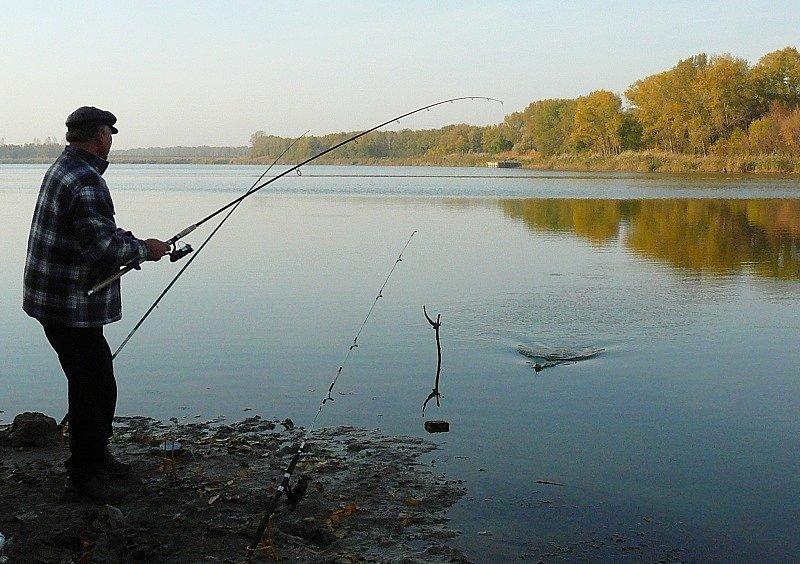 Поплавочная удочка для донной рыбалки купить в интернет-магазине